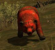 bear-mutant