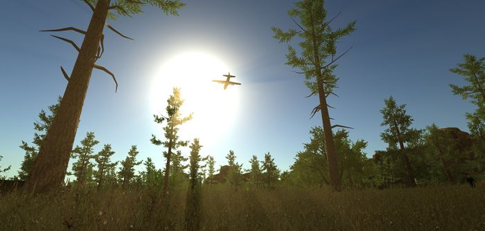 самолет в раст