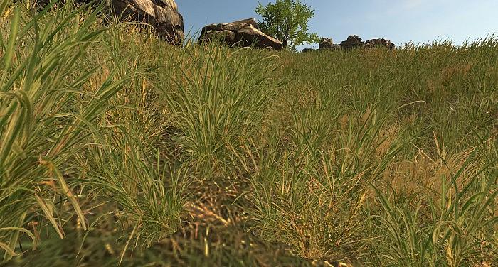 трава в раст