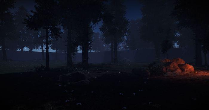обновленный лес ночью в Rust