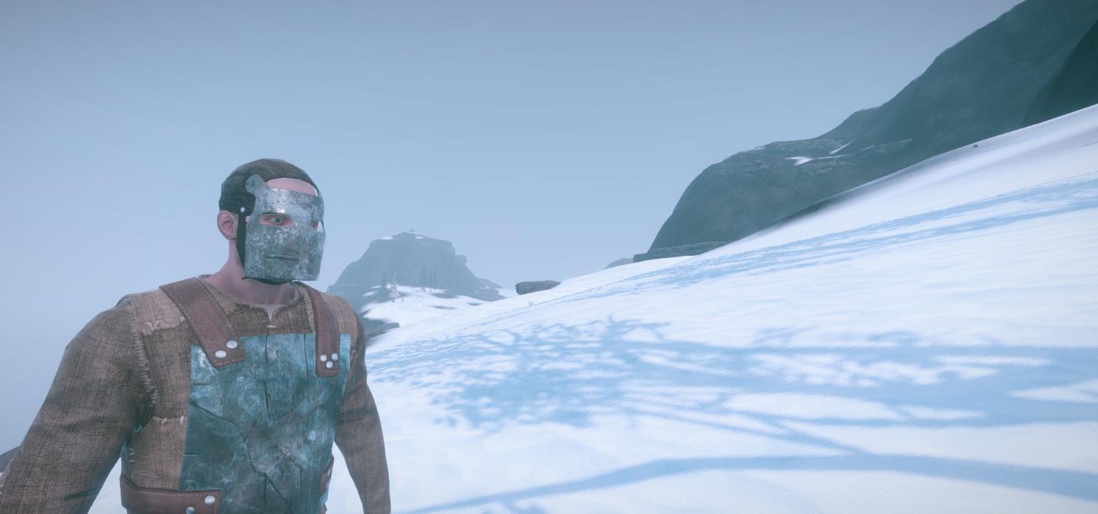 Снежный биом