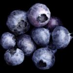 Смородина (Blueberries)