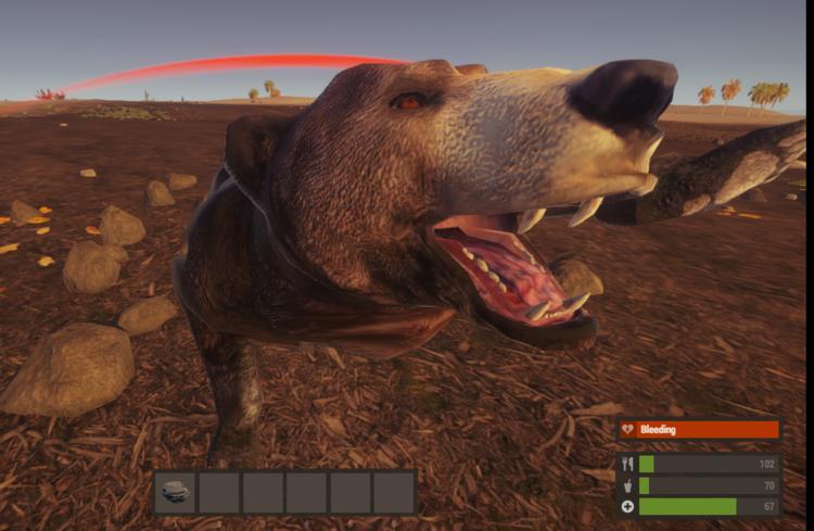 Медведь в атаке!